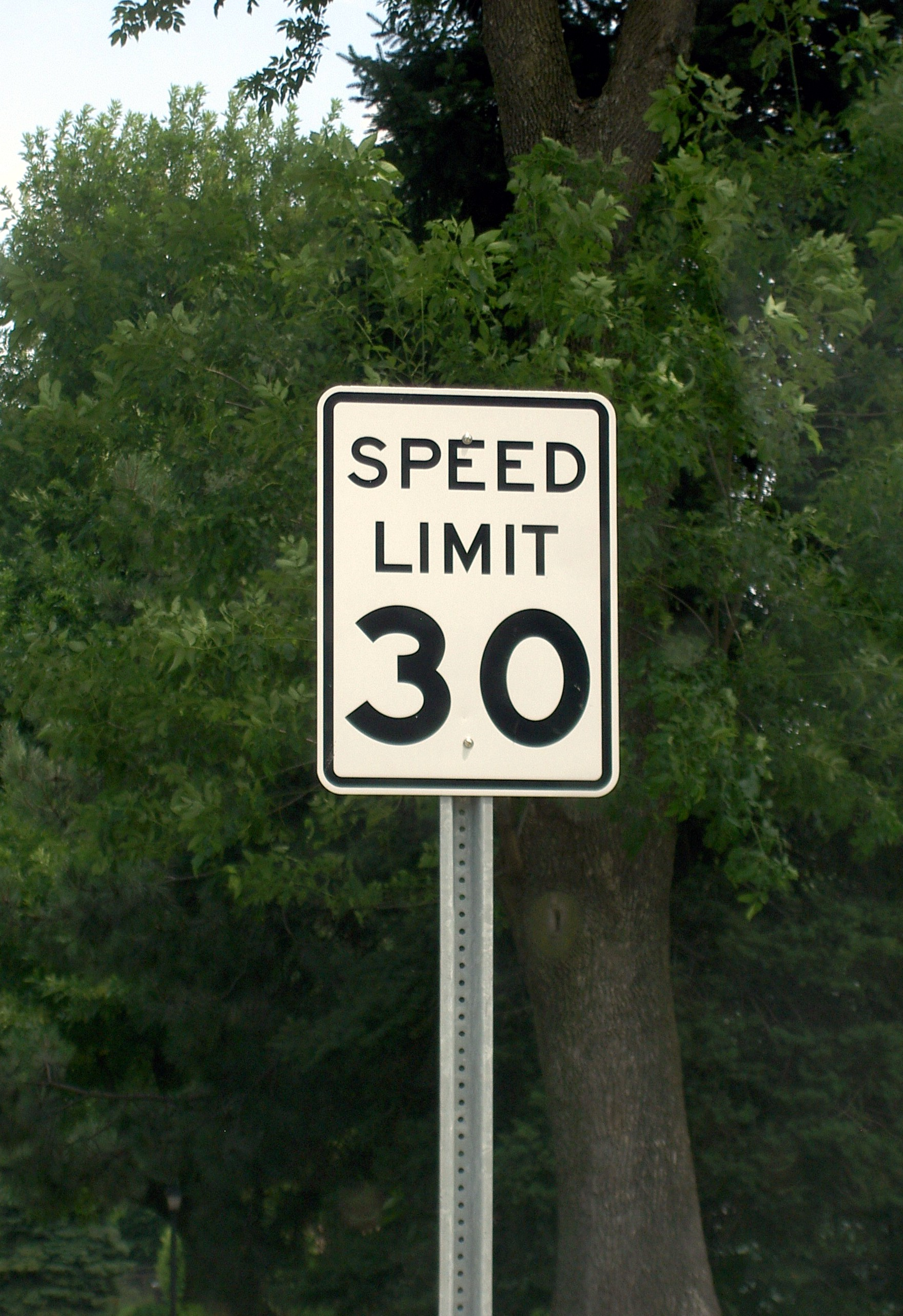 Speed Limit Sign - 30 MPH