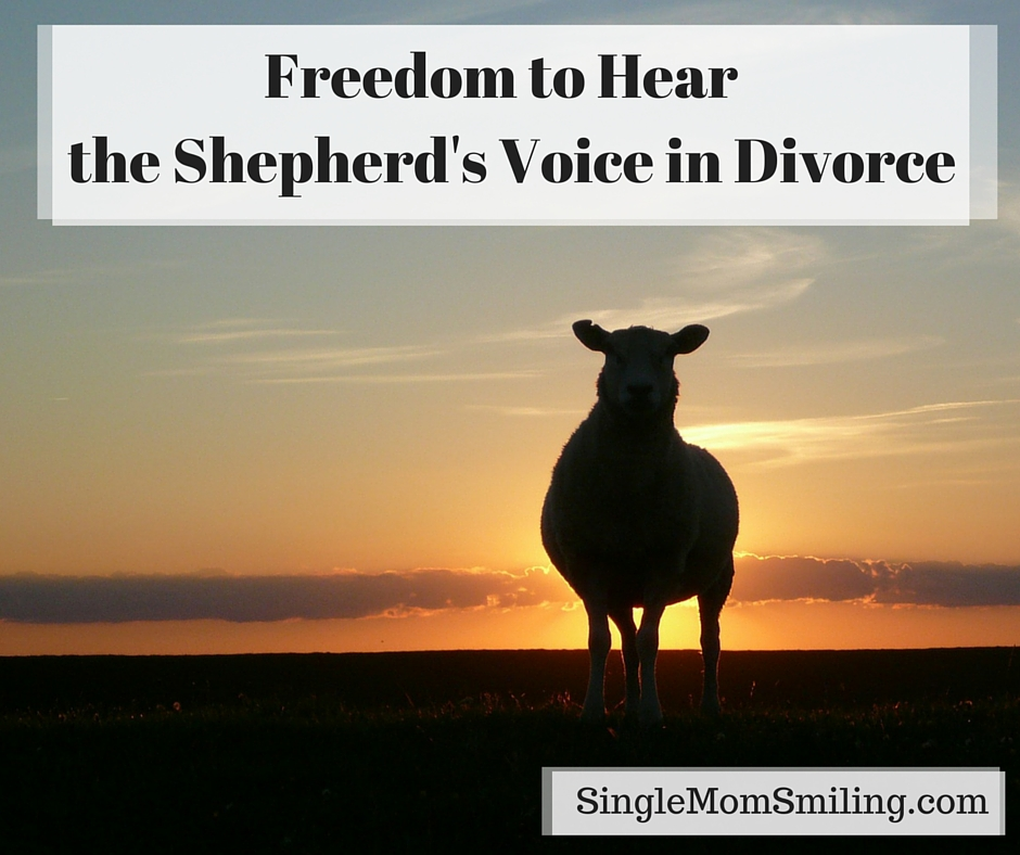 """north freedom divorced singles North america latin america united states  wels has prepared a document titled """"this we believe"""" that will be useful in understanding concepts such as sin."""